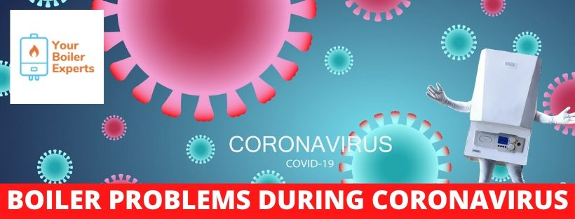 coronavirus graphic with blue and pink germs